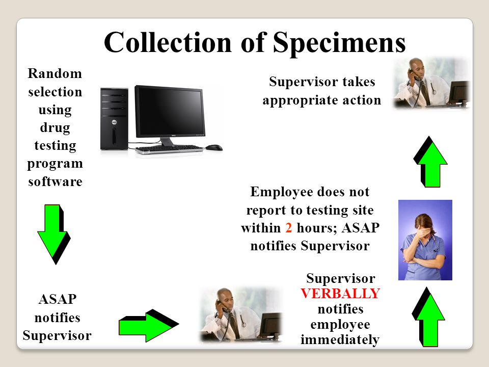 Collection of Specimens ASAP notifies Supervisor Employee does not report to testing site within 2 hours; ASAP notifies Supervisor Supervisor takes appropriate action Random selection using drug testing program software Supervisor VERBALLY notifies employee immediately