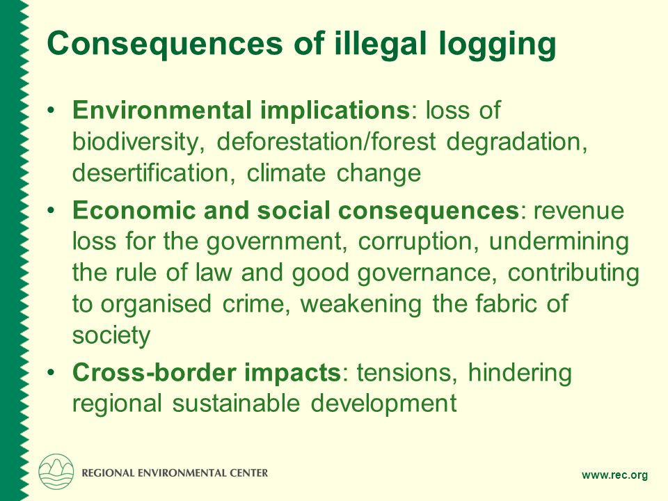 Consequences of illegal logging Environmental implications: loss of biodiversity, deforestation/forest degradation, desertification, climate change Economic and social consequences: revenue loss for the government, corruption, undermining the rule of law and good governance, contributing to organised crime, weakening the fabric of society Cross-border impacts: tensions, hindering regional sustainable development