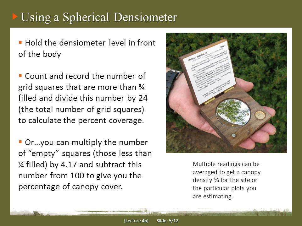 Using a Spherical Densiometer {Lecture 4b} Slide: 5/12  Hold the densiometer level in front of the body  Count and record the number of grid squares that are more than ¾ filled and divide this number by 24 (the total number of grid squares) to calculate the percent coverage.
