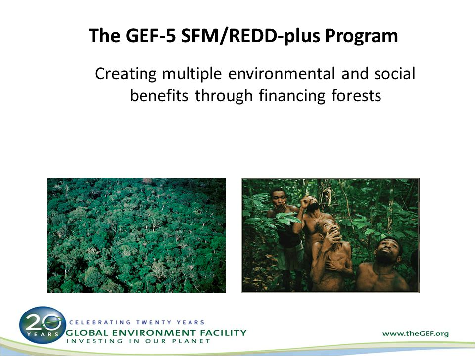 The GEF-5 SFM/REDD-plus Program Creating multiple environmental and social benefits through financing forests