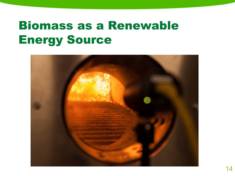 Biomass as a Renewable Energy Source 14