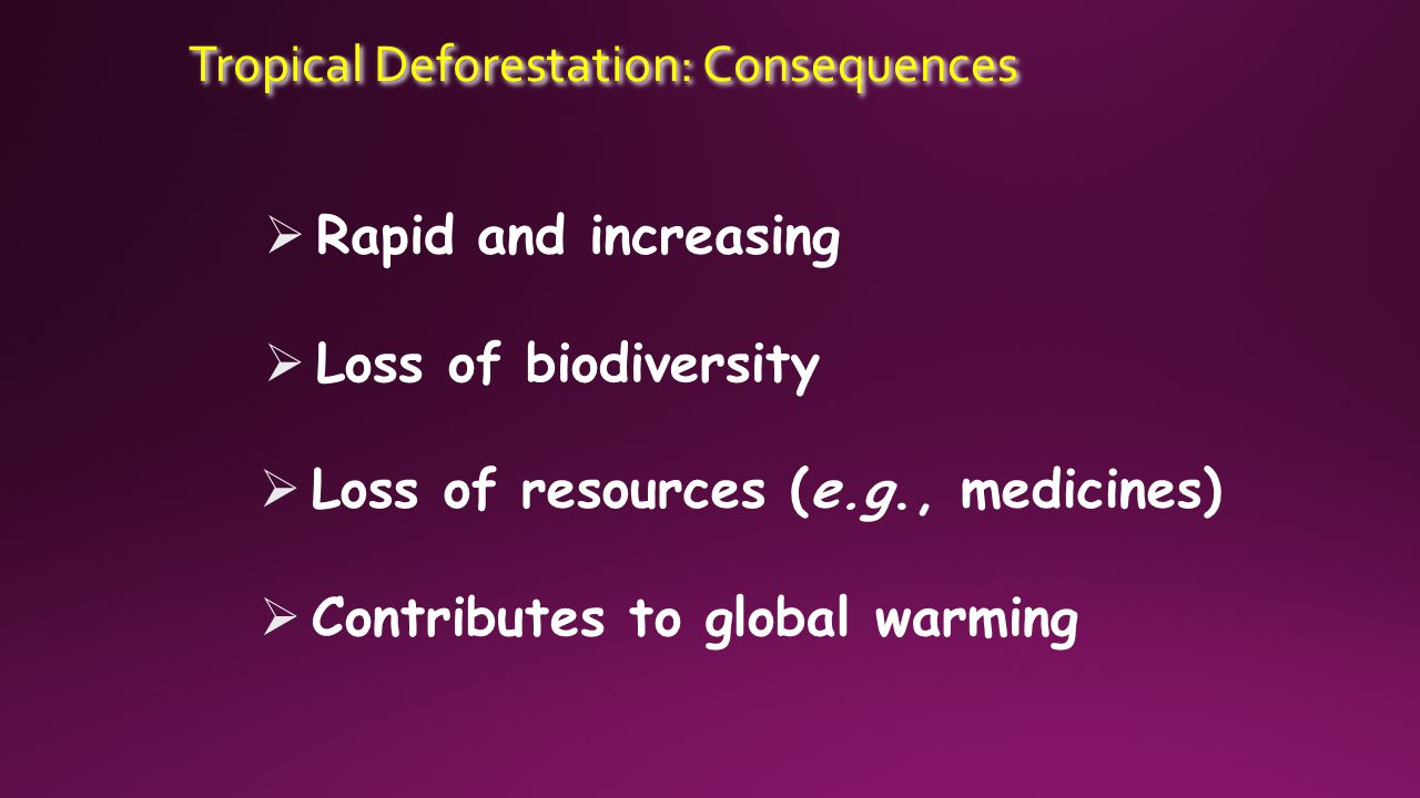 Tropical Deforestation: Consequences  Rapid and increasing  Loss of biodiversity  Loss of resources (e.g., medicines)  Contributes to global warming