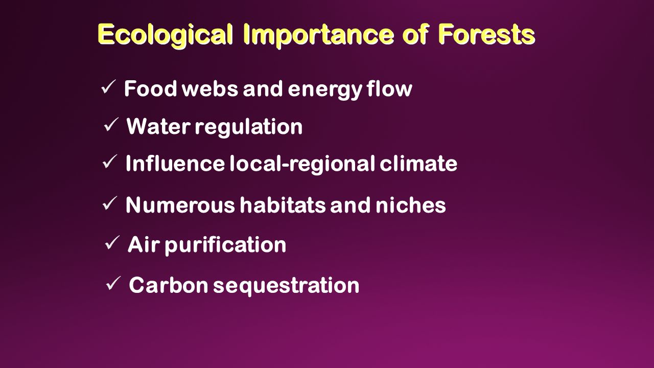 Ecological Importance of Forests Food webs and energy flow Water regulation Influence local-regional climate Numerous habitats and niches Air purification Carbon sequestration