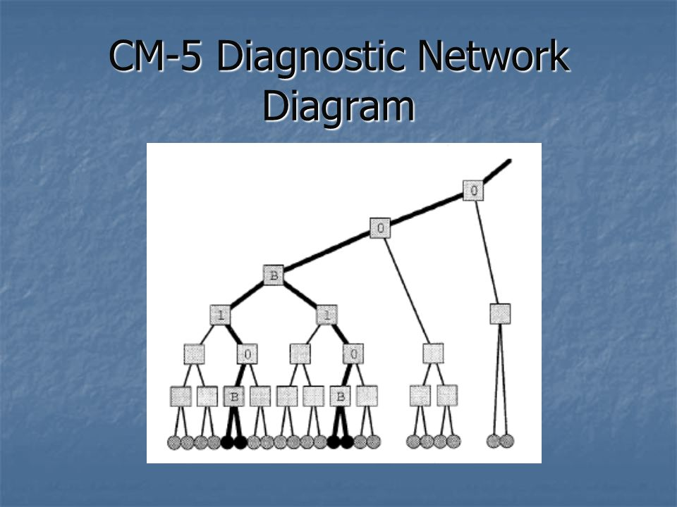 CM-5 Diagnostic Network Diagram