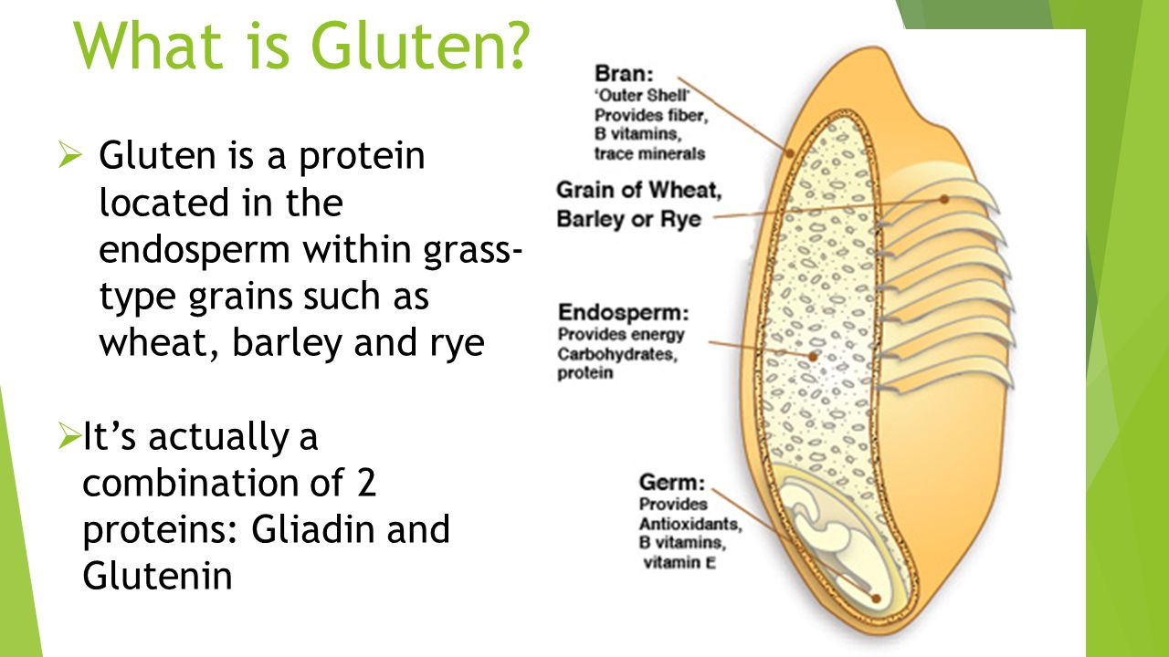 Gluten – What We All Should Know Dr. Rich Sheerin DC, CSCS Adjunct ...
