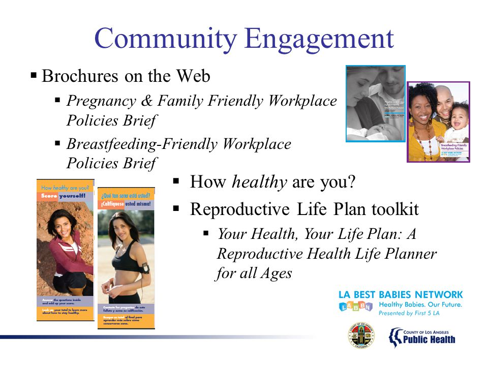 Community Engagement  Brochures on the Web  Pregnancy & Family Friendly Workplace Policies Brief  Breastfeeding-Friendly Workplace Policies Brief  How healthy are you.