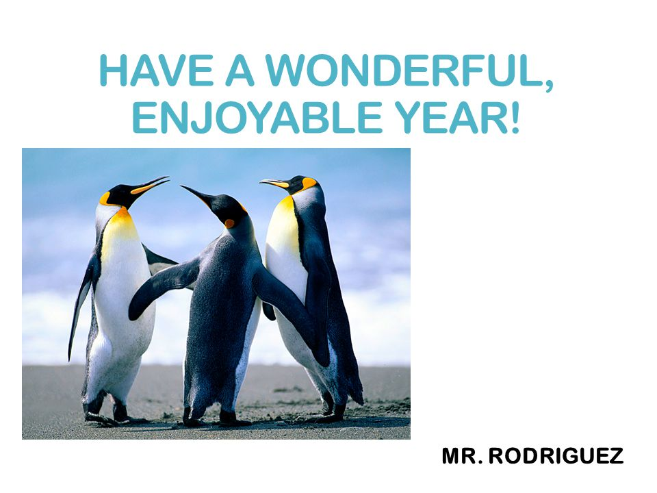 HAVE A WONDERFUL, ENJOYABLE YEAR! MR. RODRIGUEZ