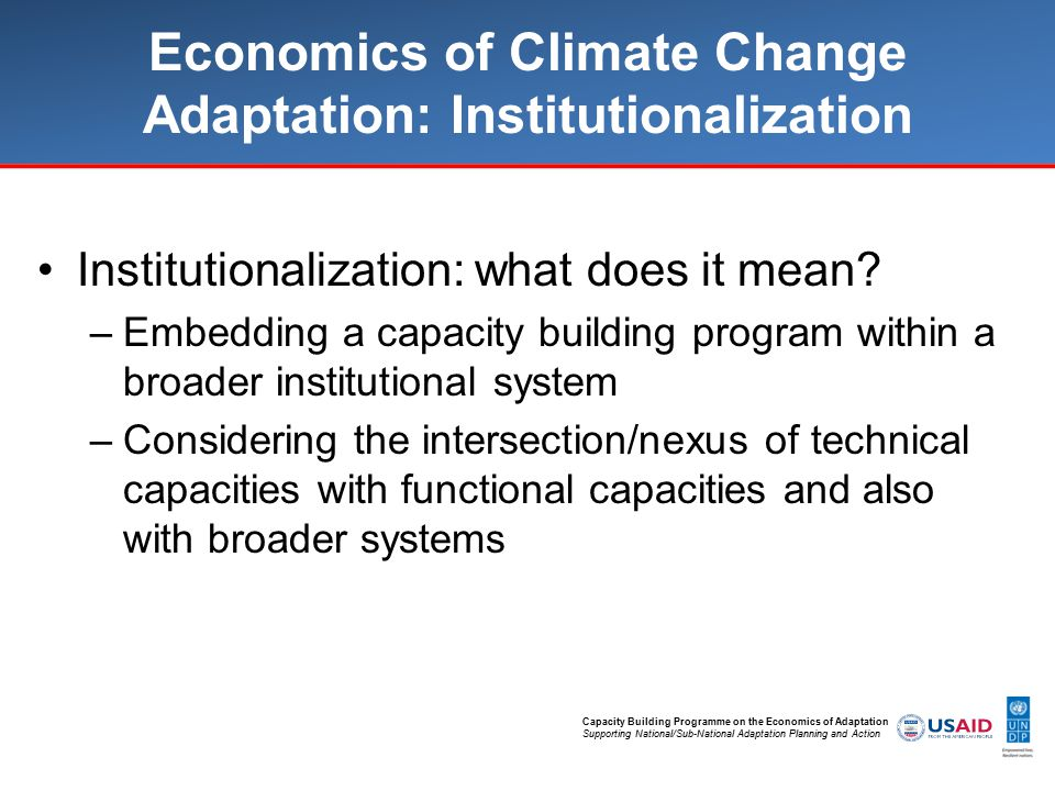 Capacity Building Programme on the Economics of Adaptation Supporting National/Sub-National Adaptation Planning and Action Economics of Climate Change Adaptation: Institutionalization Institutionalization: what does it mean.