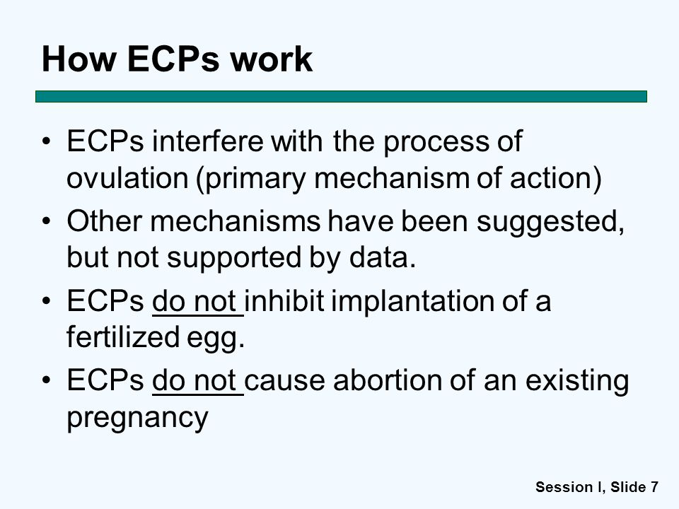 Session I, Slide 7 How ECPs work ECPs interfere with the process of ovulation (primary mechanism of action) Other mechanisms have been suggested, but not supported by data.