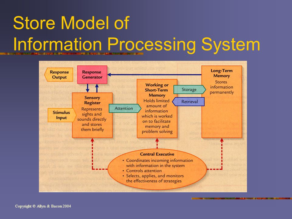 Copyright © Allyn & Bacon 2004 Store Model of Information Processing System