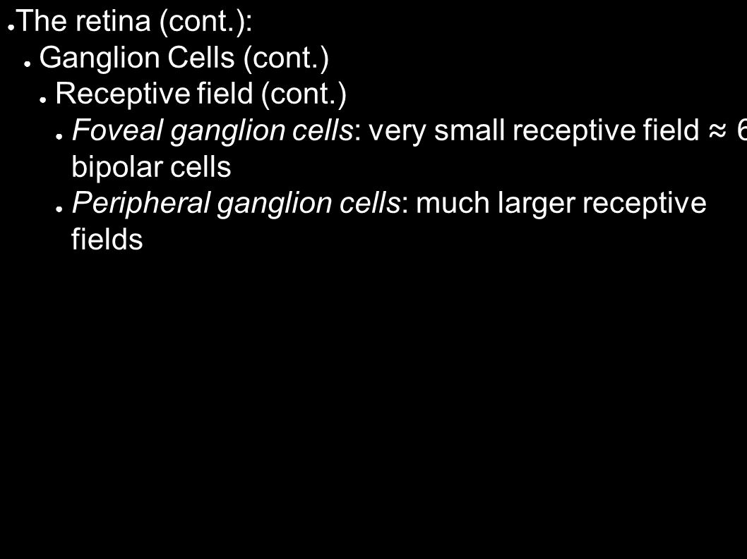 ● The retina (cont.): ● Ganglion Cells (cont.) ● Receptive field (cont.) ● Foveal ganglion cells: very small receptive field ≈ 6 bipolar cells ● Peripheral ganglion cells: much larger receptive fields
