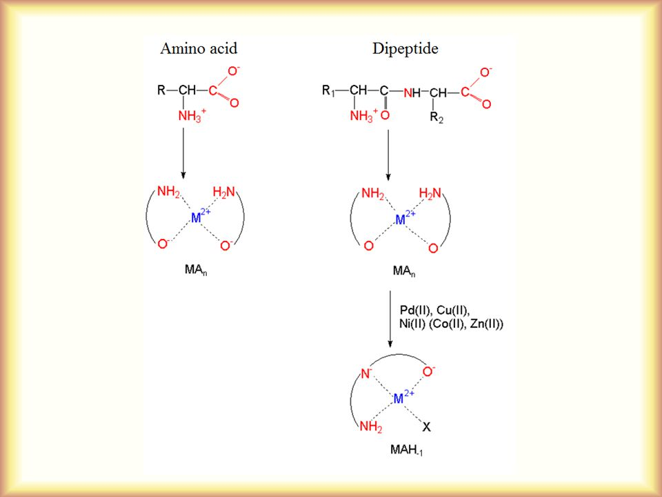 Biocomplexes metal binding ability of biomolecules ppt download 5 1 ccuart Choice Image