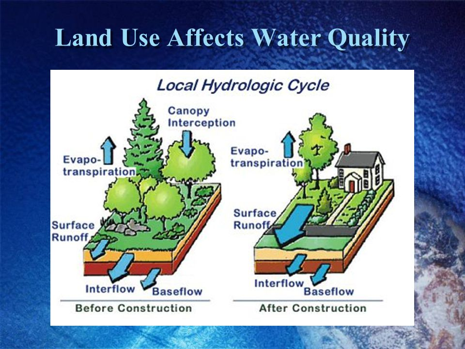 Land Use Affects Water Quality
