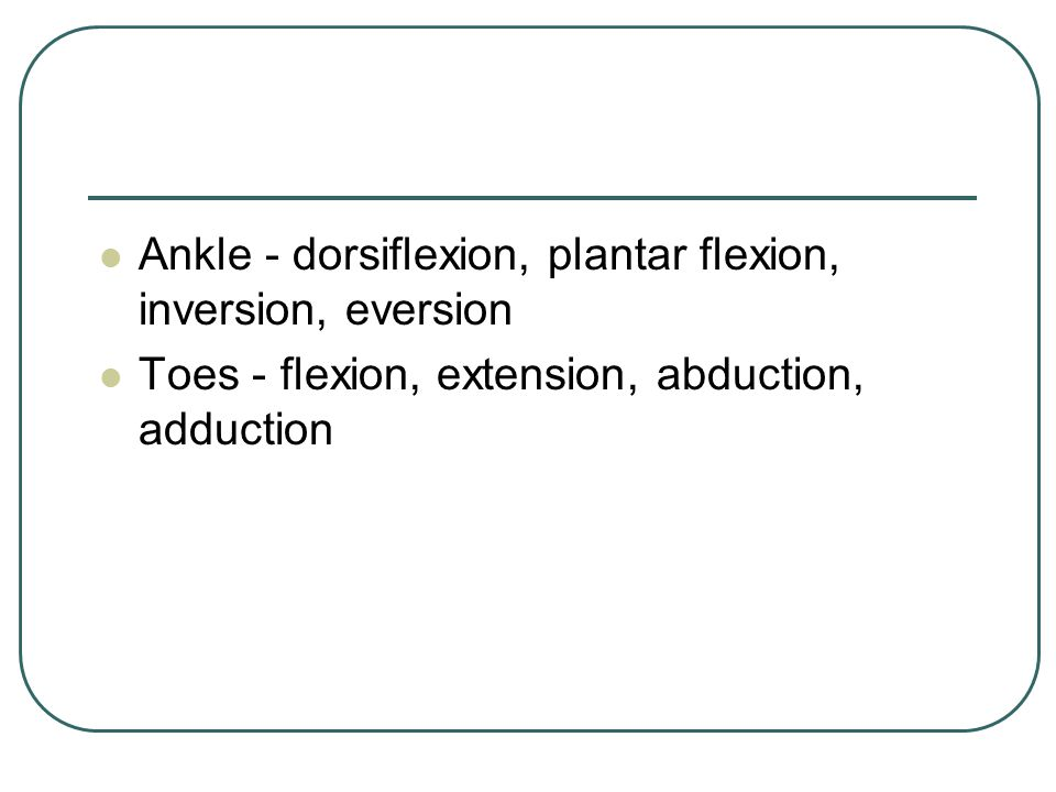 Ankle - dorsiflexion, plantar flexion, inversion, eversion Toes - flexion, extension, abduction, adduction