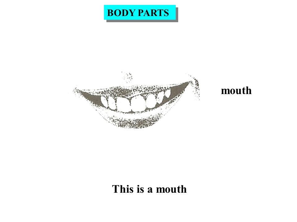 mouth This is a mouth BODY PARTS