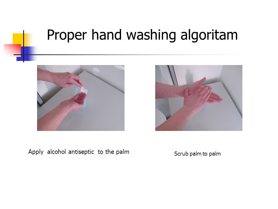 Proper hand washing algoritam Scrub palm to palm Apply alcohol antiseptic to the palm