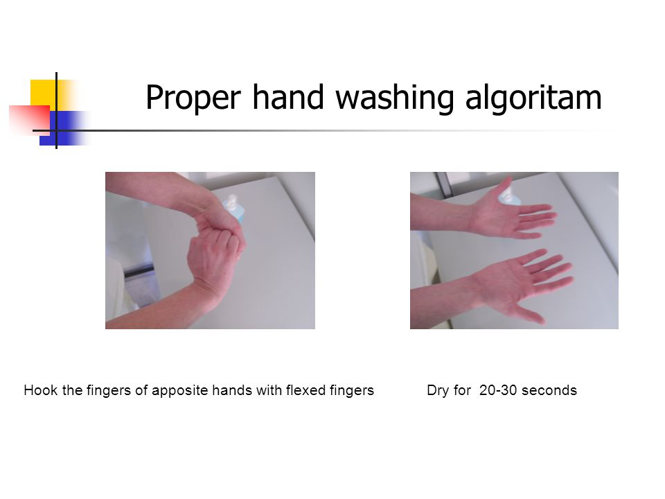 Hook the fingers of apposite hands with flexed fingers Dry for seconds Proper hand washing algoritam