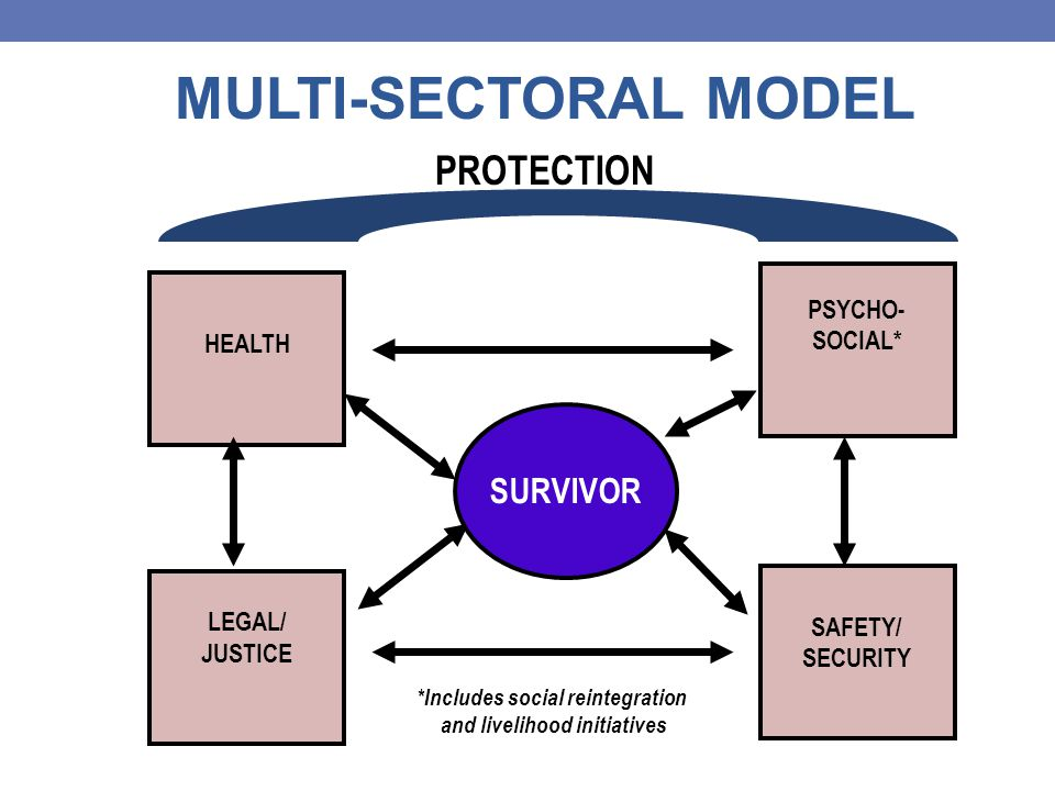SURVIVOR HEALTH PSYCHO- SOCIAL* LEGAL/ JUSTICE SAFETY/ SECURITY PROTECTION MULTI-SECTORAL MODEL *Includes social reintegration and livelihood initiatives
