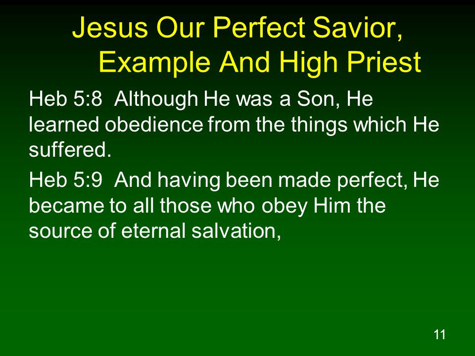 11 Jesus Our Perfect Savior, Example And High Priest Heb 5:8 Although He was a Son, He learned obedience from the things which He suffered.