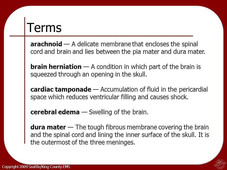 Copyright 2009 Seattle/King County EMS Terms arachnoid — A delicate membrane that encloses the spinal cord and brain and lies between the pia mater and dura mater.
