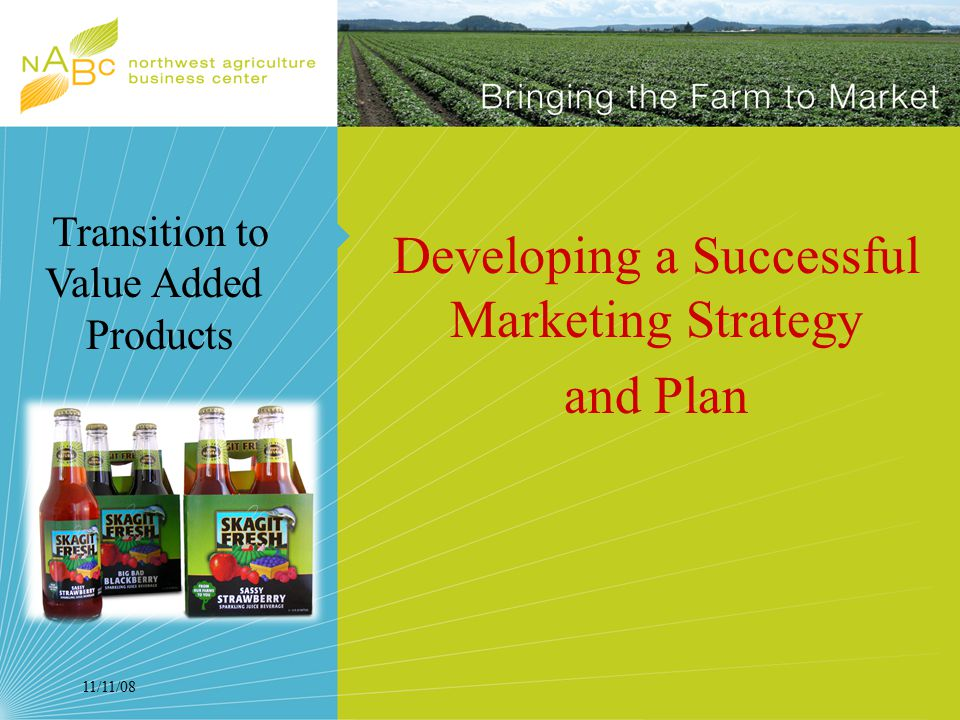 11/11/08 Developing a Successful Marketing Strategy and Plan Transition to Value Added Products