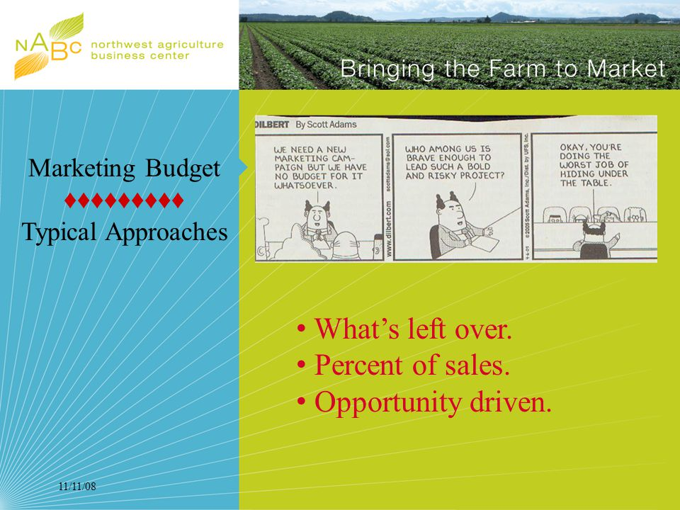 11/11/08 Marketing Budget ♦♦♦♦♦♦♦♦♦ Typical Approaches What's left over.