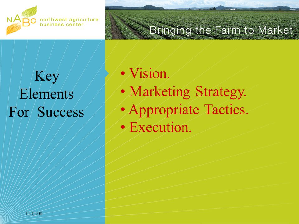 11/11/08 Vision. Marketing Strategy. Appropriate Tactics. Execution. Key Elements For Success
