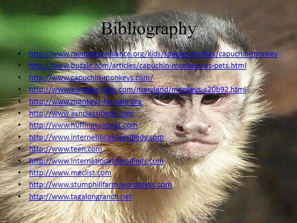 Capuchin Monkey By: Vivian D  About Me Capuchin monkeys are