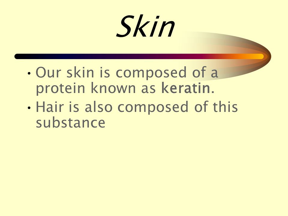 Skin Skin is the largest organ of the body.
