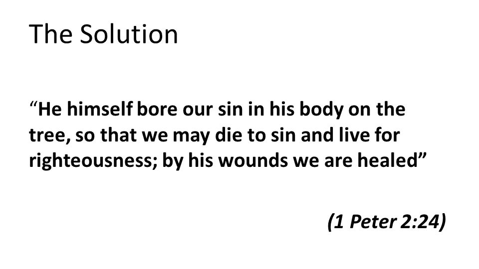 The Solution He himself bore our sin in his body on the tree, so that we may die to sin and live for righteousness; by his wounds we are healed (1 Peter 2:24)