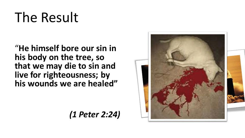 The Result He himself bore our sin in his body on the tree, so that we may die to sin and live for righteousness; by his wounds we are healed (1 Peter 2:24)