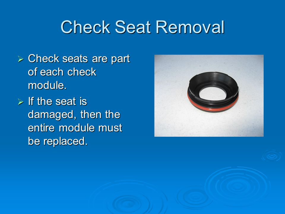 Check Seat Removal  Check seats are part of each check module.