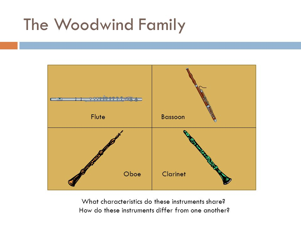 The Woodwind Family What characteristics do these instruments share.