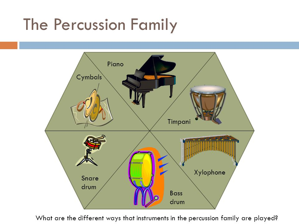 The Percussion Family What are the different ways that instruments in the percussion family are played.