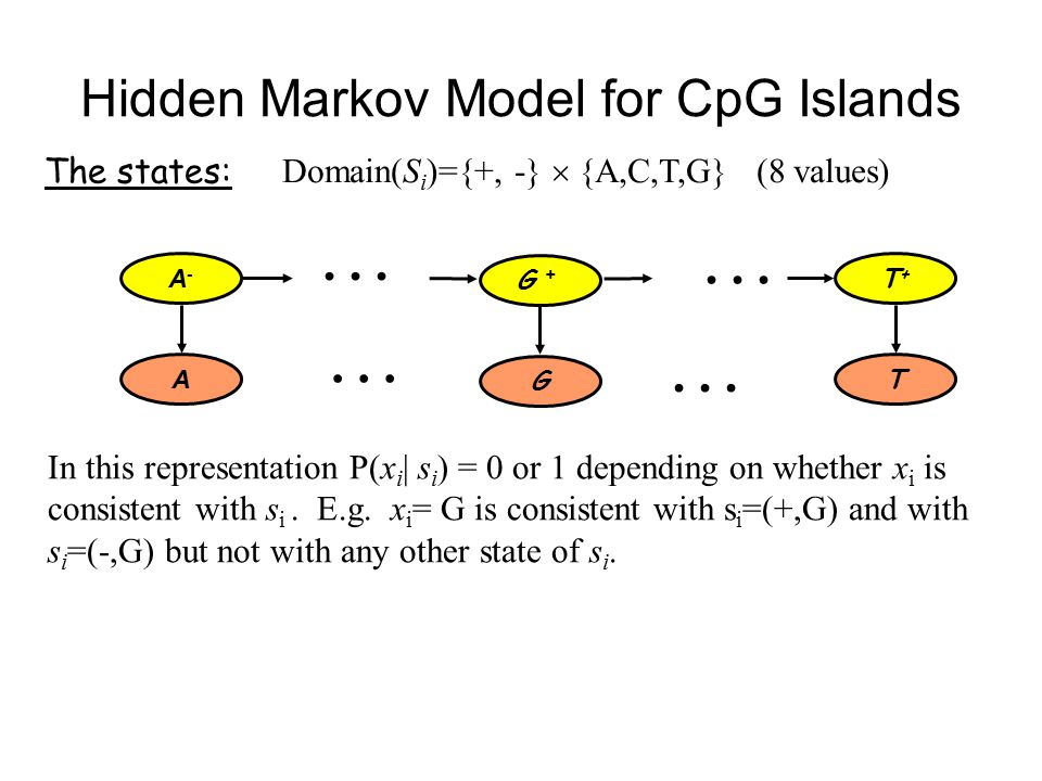 Hidden Markov Model for CpG Islands The states: Domain(S i )={+, -}  {A,C,T,G} (8 values) In this representation P(x i | s i ) = 0 or 1 depending on whether x i is consistent with s i.