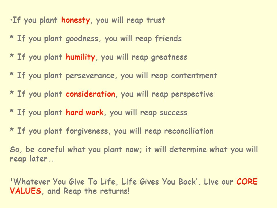 If you plant honesty, you will reap trust * If you plant goodness, you will reap friends * If you plant humility, you will reap greatness * If you plant perseverance, you will reap contentment * If you plant consideration, you will reap perspective * If you plant hard work, you will reap success * If you plant forgiveness, you will reap reconciliation So, be careful what you plant now; it will determine what you will reap later..