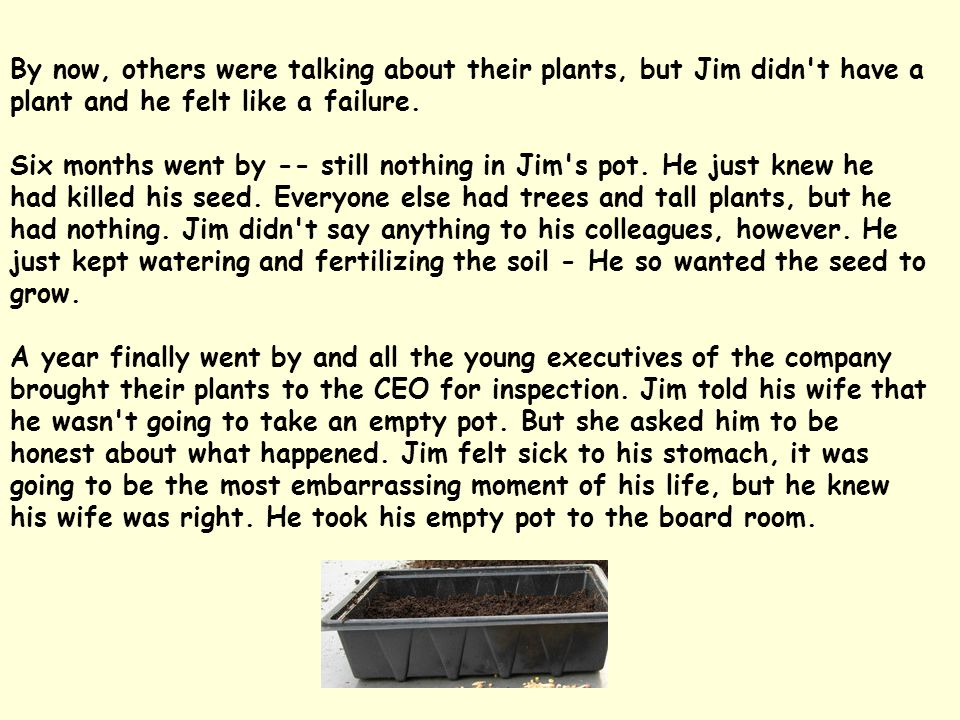 By now, others were talking about their plants, but Jim didn t have a plant and he felt like a failure.