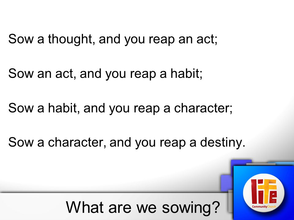 What are we sowing.