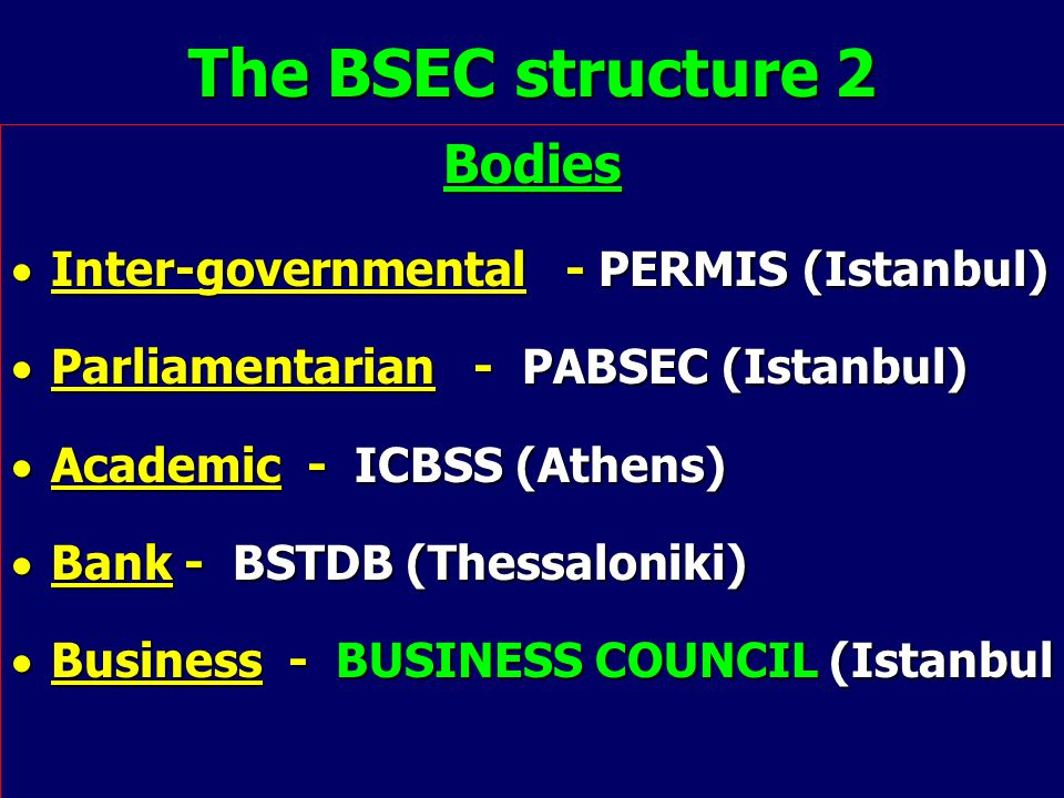 The BSEC structure 2 Bodies  Inter-governmental - PERMIS (Istanbul)  Parliamentarian - PABSEC (Istanbul)  Academic - ICBSS (Athens)  Bank - BSTDB (Thessaloniki)  Business - BUSINESS COUNCIL (Istanbul