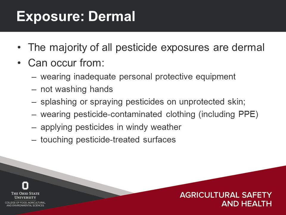 Exposure: Dermal The majority of all pesticide exposures are dermal Can occur from: –wearing inadequate personal protective equipment –not washing hands –splashing or spraying pesticides on unprotected skin; –wearing pesticide-contaminated clothing (including PPE) –applying pesticides in windy weather –touching pesticide-treated surfaces
