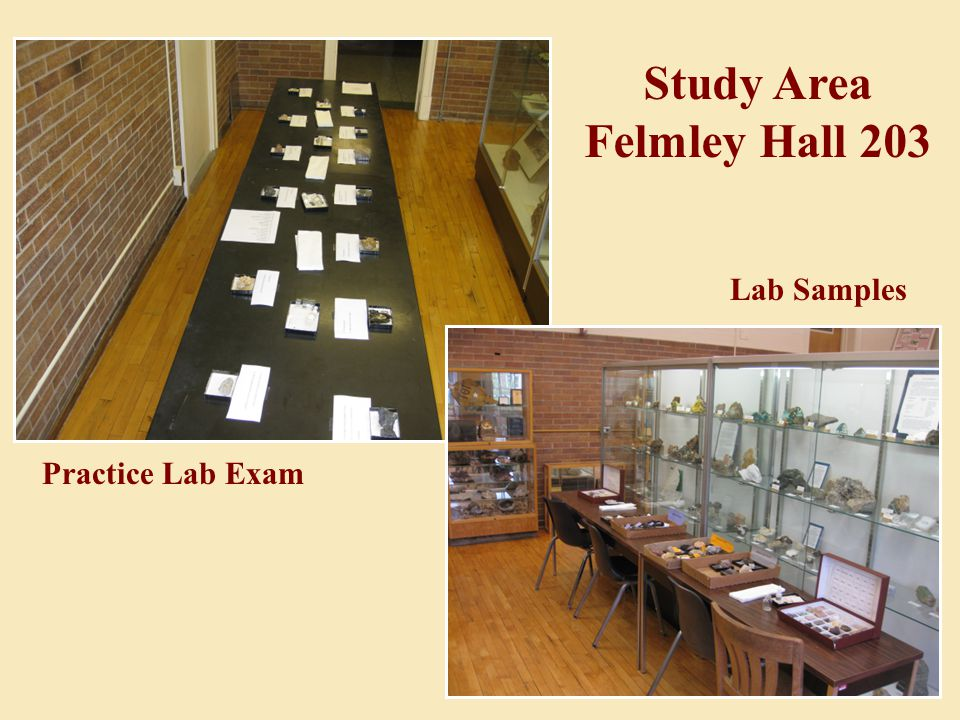 Practice Lab Exam Lab Samples Study Area Felmley Hall 203