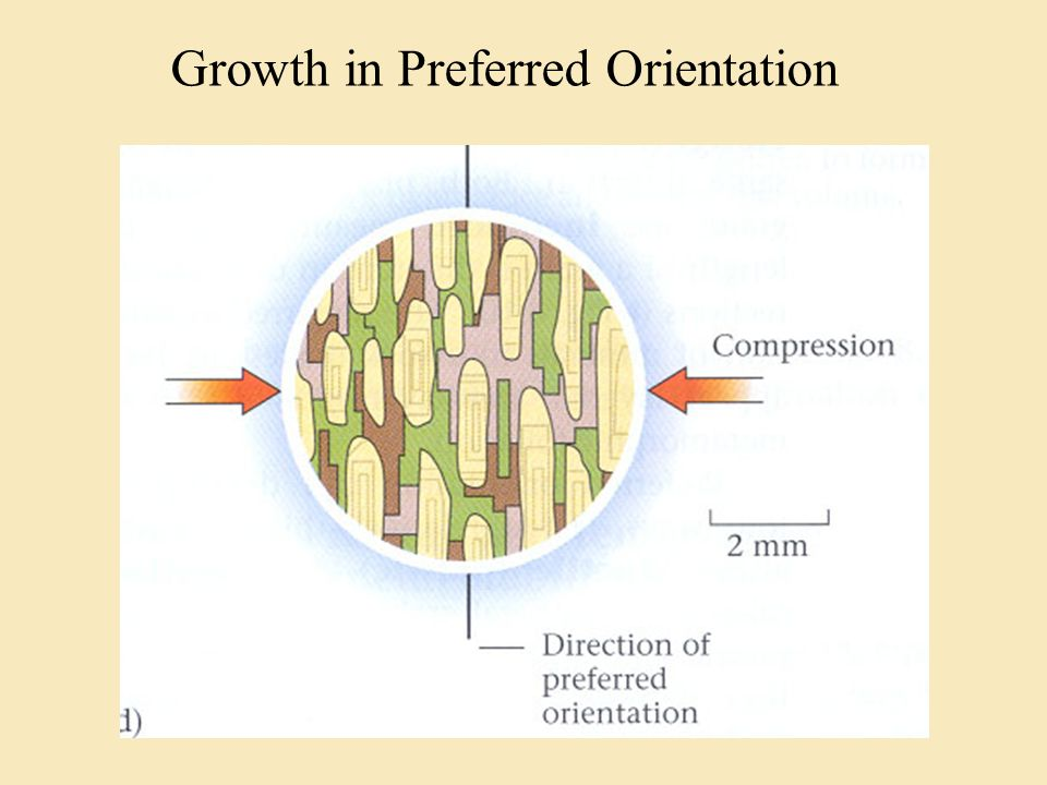 Growth in Preferred Orientation