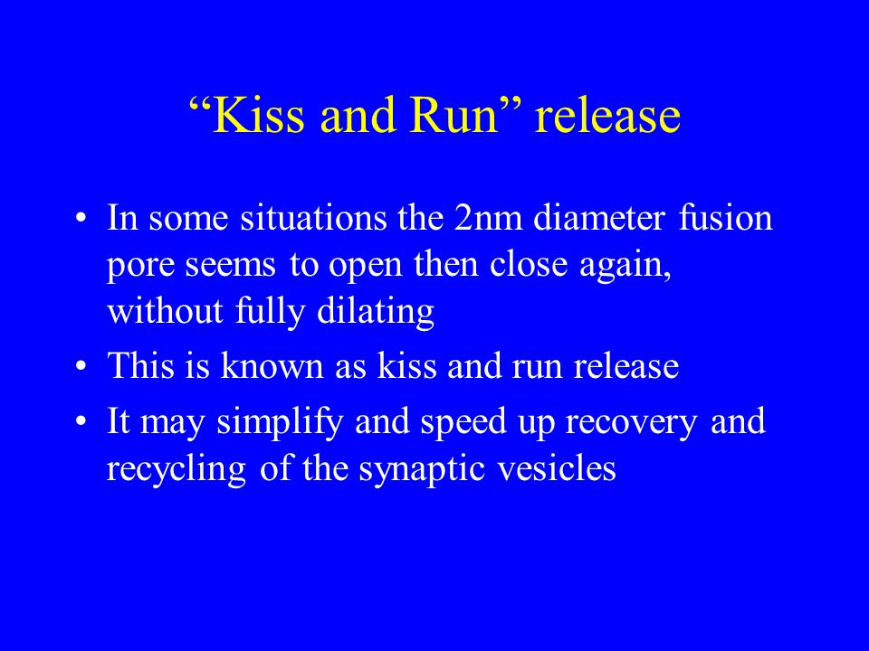 Kiss and Run release In some situations the 2nm diameter fusion pore seems to open then close again, without fully dilating This is known as kiss and run release It may simplify and speed up recovery and recycling of the synaptic vesicles