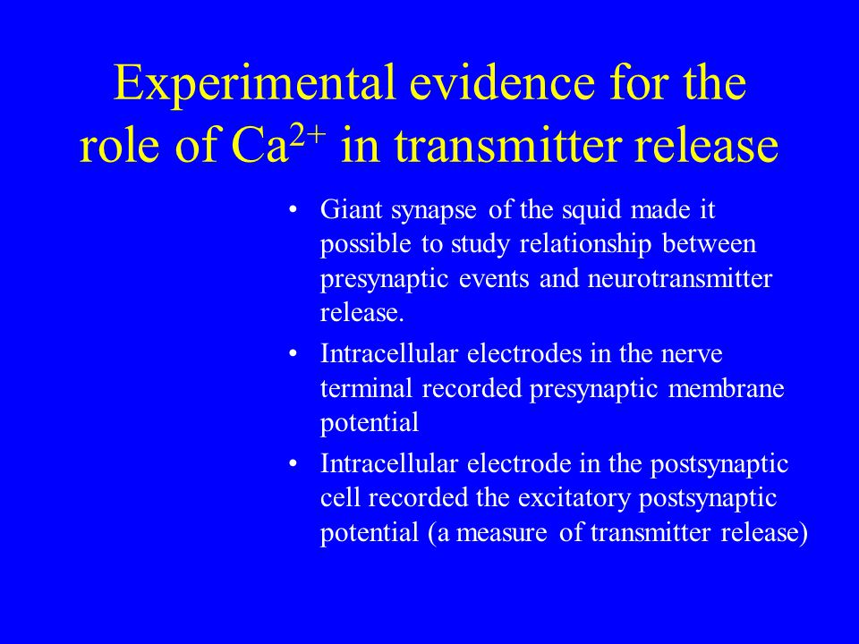 Experimental evidence for the role of Ca 2+ in transmitter release Giant synapse of the squid made it possible to study relationship between presynaptic events and neurotransmitter release.