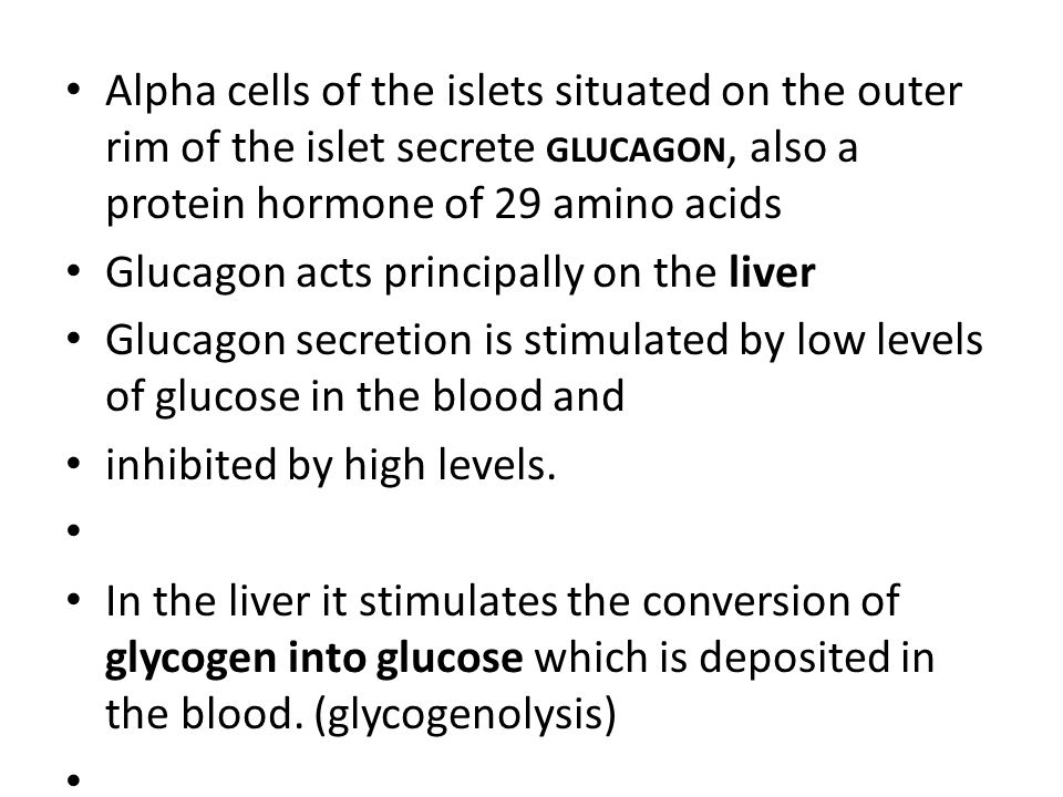 Alpha cells of the islets situated on the outer rim of the islet secrete GLUCAGON, also a protein hormone of 29 amino acids Glucagon acts principally on the liver Glucagon secretion is stimulated by low levels of glucose in the blood and inhibited by high levels.