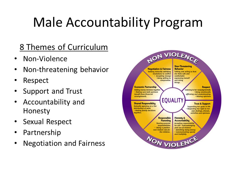 Male Accountability Program 8 Themes of Curriculum Non-Violence Non-threatening behavior Respect Support and Trust Accountability and Honesty Sexual Respect Partnership Negotiation and Fairness