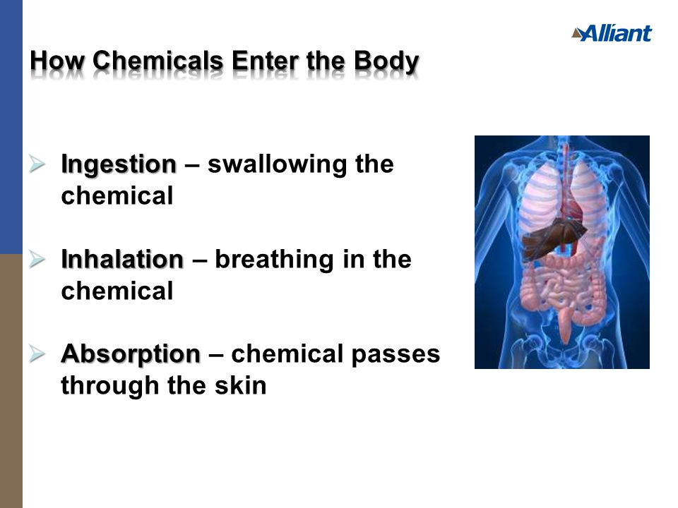  Ingestion  Ingestion – swallowing the chemical  Inhalation  Inhalation – breathing in the chemical  Absorption  Absorption – chemical passes through the skin