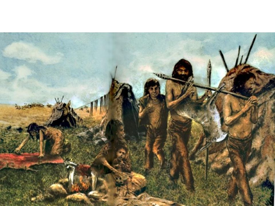 paleolithic time period