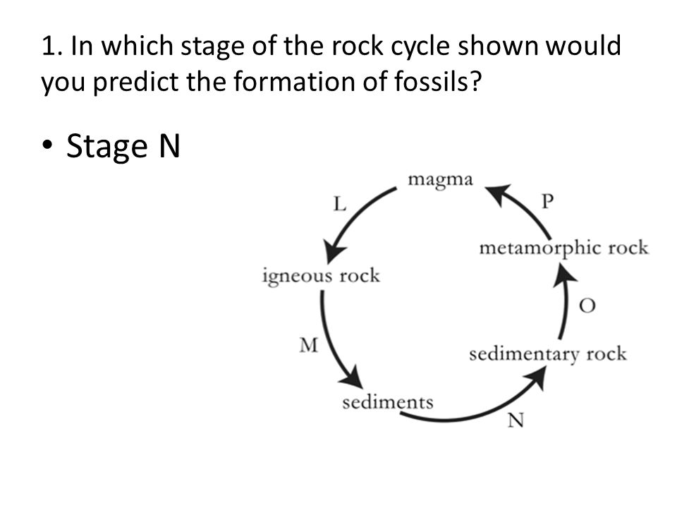 Unit test review earth science in which stage of the rock cycle 2 1 ccuart Images