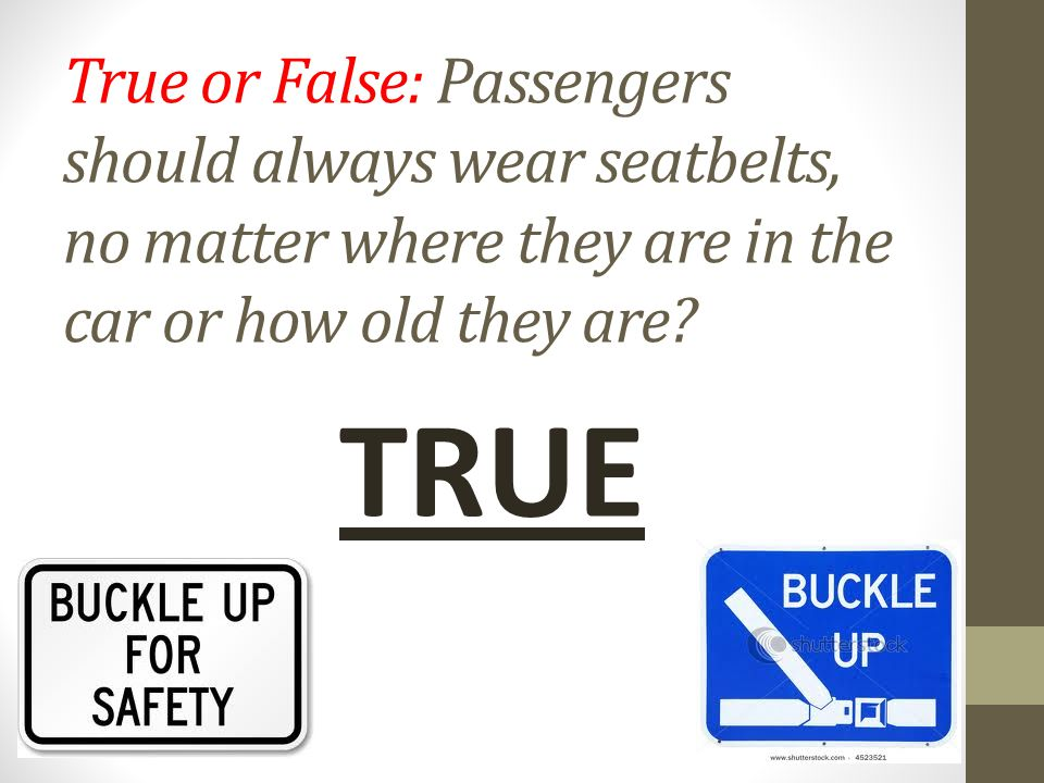 Driver Responsibility Chapter 3 Buckle Up It S The Law True Or